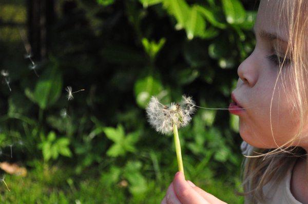 sparking childrens thinkibility
