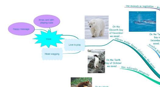 The Twelve Months of Endangered Animals Song polar